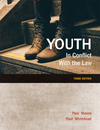 2017 youth in conflict cvr